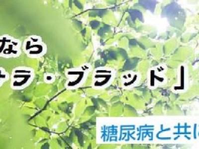 サラサラ・ブラッド【糖尿病克服】